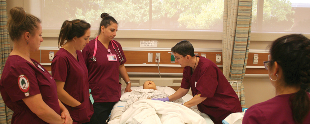 Licensed Vocational Nurse  Tenderness. Degree For Psychologist Exclusive Travel Club. Prime Rate Premium Finance Corporation Inc. Chimney Repair Portland Or Santa Cruz Movers. Commercial Dishwashing Chemicals. Camping World Charleston Sc Rv Sales. Health Information Systems Salary. Art Institute Of Nashville Reviews. Assisted Living Prescott Az Mas 90 Mas 200